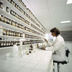 perfumers fragrances production